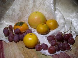Fruit composition 4 by SanStock