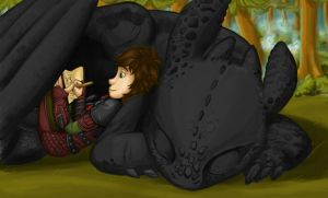 HTTYD: Mapping by MandolinDoodler
