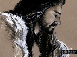 Thorin 0603 by evankart