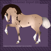 1011 Group Horse Import by Cloudrunner64