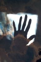 My hand in a sunbeam for you by paintresseye