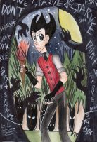 DS: JUST.DON'T.STARVE. by phantomshoujo