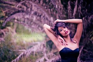 Beauty is fleeting... by clairegunnphoto