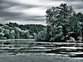 HDR IR River by electricjonny