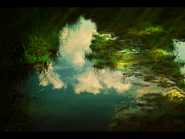 puddle by omikron1989