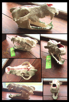 Ceramic Wolf Skull by Nightrizer