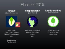 Updated Plans for 2015 by kitkatyj