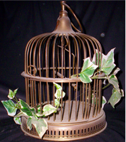 Ivy-Covered Birdcage by CrimsonNightStock