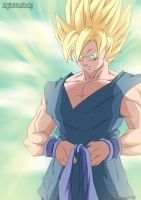 Goku. Happy New Year 2011 by Avenger94