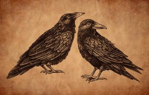 Ravens drawing by feoris