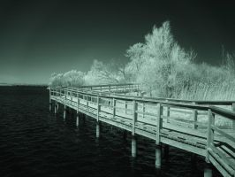 Mel Swart Boardwalk (IR) by RuralCrossroads360