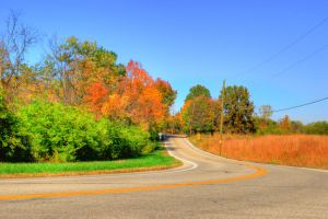 HDR Fall Road 2 by Bodatheyoda