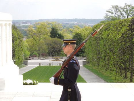 Tomb Of The Unknown Soldier by RawrRawrRawrXD