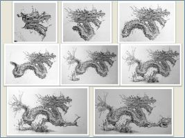 Water Dragon Montage by Paul-Shanghai