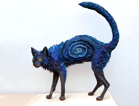 Black Galaxy Cat I by hontor