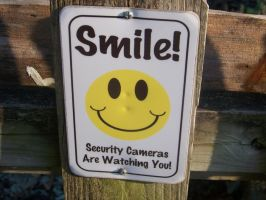 Smile! =) Security cameras are watching you! by DragonflyLite