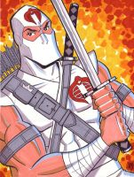 Storm Shadow by calslayton