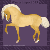 Winter Import 613 by ThatDenver