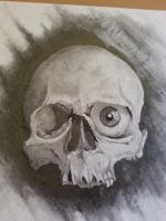 finished skull by obsessivepurpose