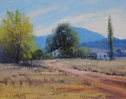 Tumut Farm by artsaus