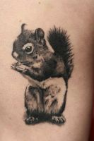 Tattoo Squirrel by Angelique Grimm by Inkage-Tattoo-Crew