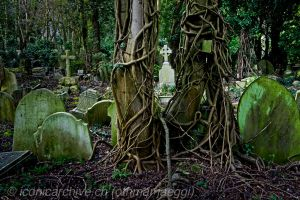 Highgate Cemetery 1 by iconicarchive