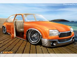 Citroen GS by roobi