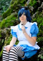 Ciel in Wonderland by lilie-morhiril