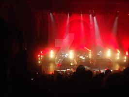 The Killers - 06/11/13 (again) by Tatmione