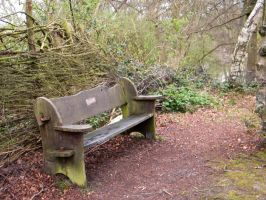 Bench By The East Lake by YesOwl
