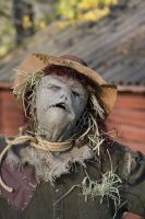 scarecrow 3 by BellaSofran