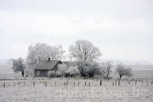 Winter in willage by amisiux