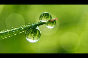 Drops by mARTinimal