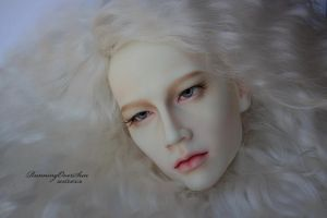 Ludwig FaceUp Details_2 by Ariel-Sun