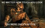 Skyrim Kittehz by Zuerel