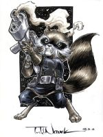 Rocket Raccoon by ToddNauck