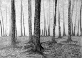 Trees Pencil Drawing by aakritiarts