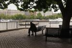 Man on South Bank of London by Scotophobic