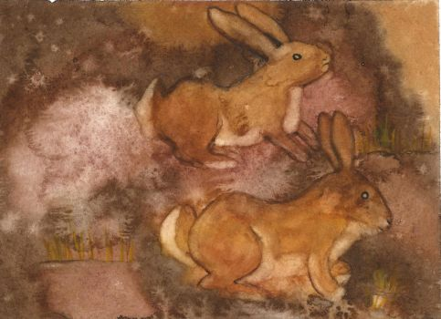 Two Bunnies by CaducaNix