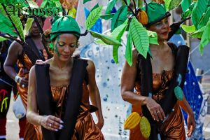 Carnaval 2011 N'04 by Appossai