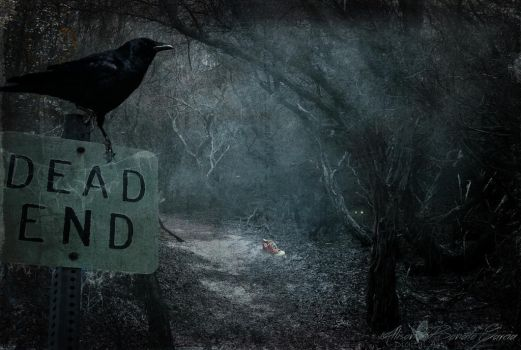 Dead End by allison712