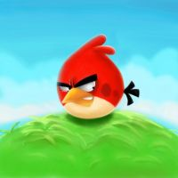 One angry bird by wabea