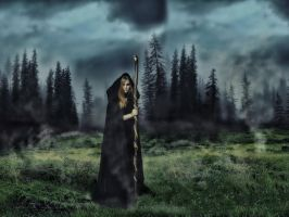 The Witch on the meadow by BanditArtDesign