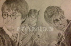 Harry potter through the ages by pdwright