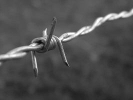 Barb Wire by TayMcKayPhotography