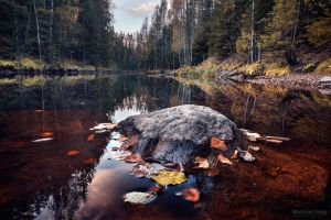 Autumn in Palsankoski II by m-eralp