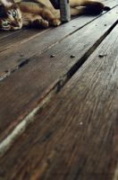 floorboards by onegreyelephant