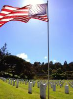 US National Cemetary Old Glory by Partywave