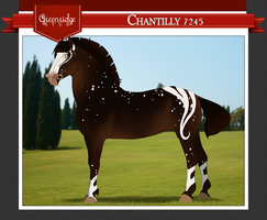 Chantilly 7245 by beauclaire