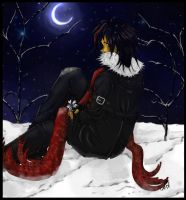 winter night shadow by sarin15
